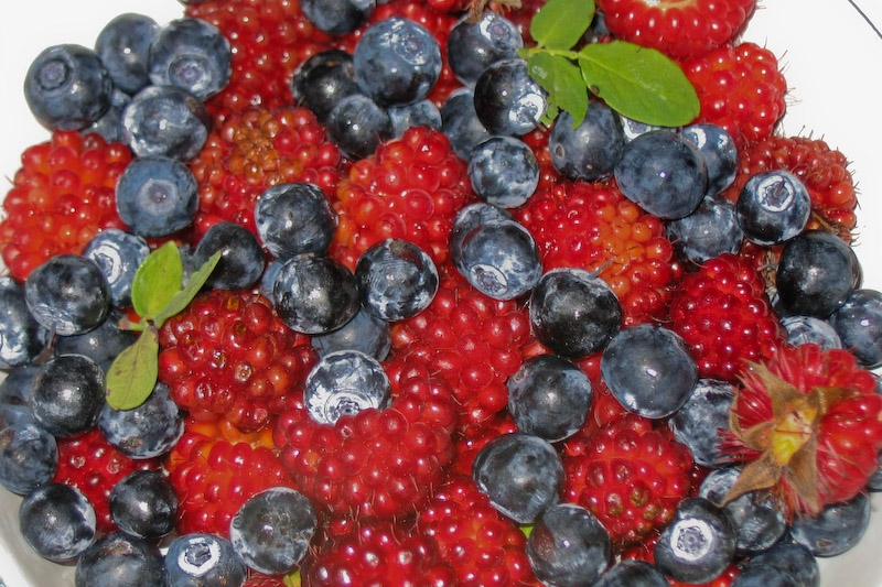 mixed-berries-1